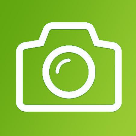 iPad Mini 2 Front or Rear Facing Camera Repair