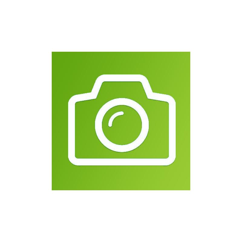 iPad 2 Front or Rear Facing Camera Repair